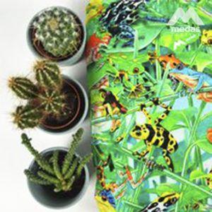 Drukowana bawełna i kaktusy w donicach